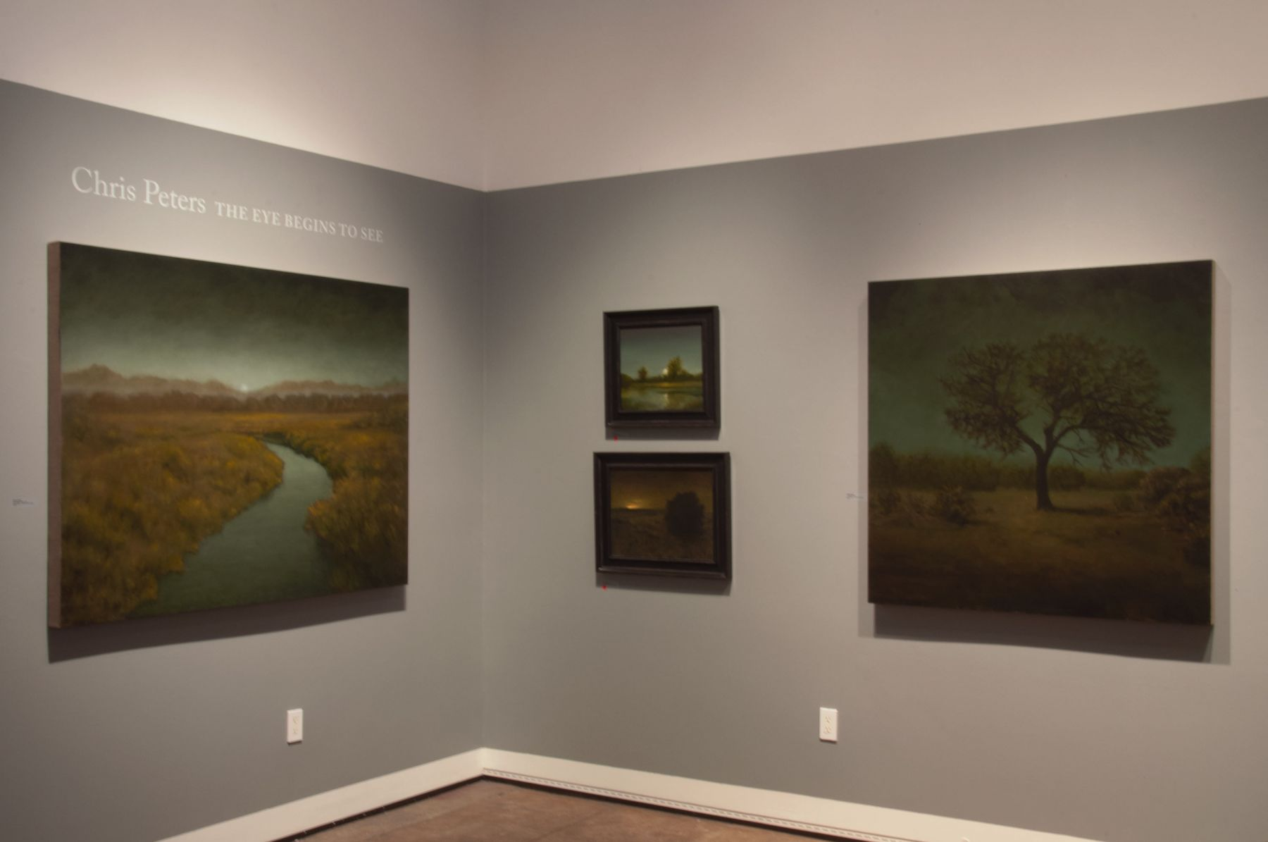 The Eye Begins To See: New Works by Chris Peters at Sullivan Goss Gallery