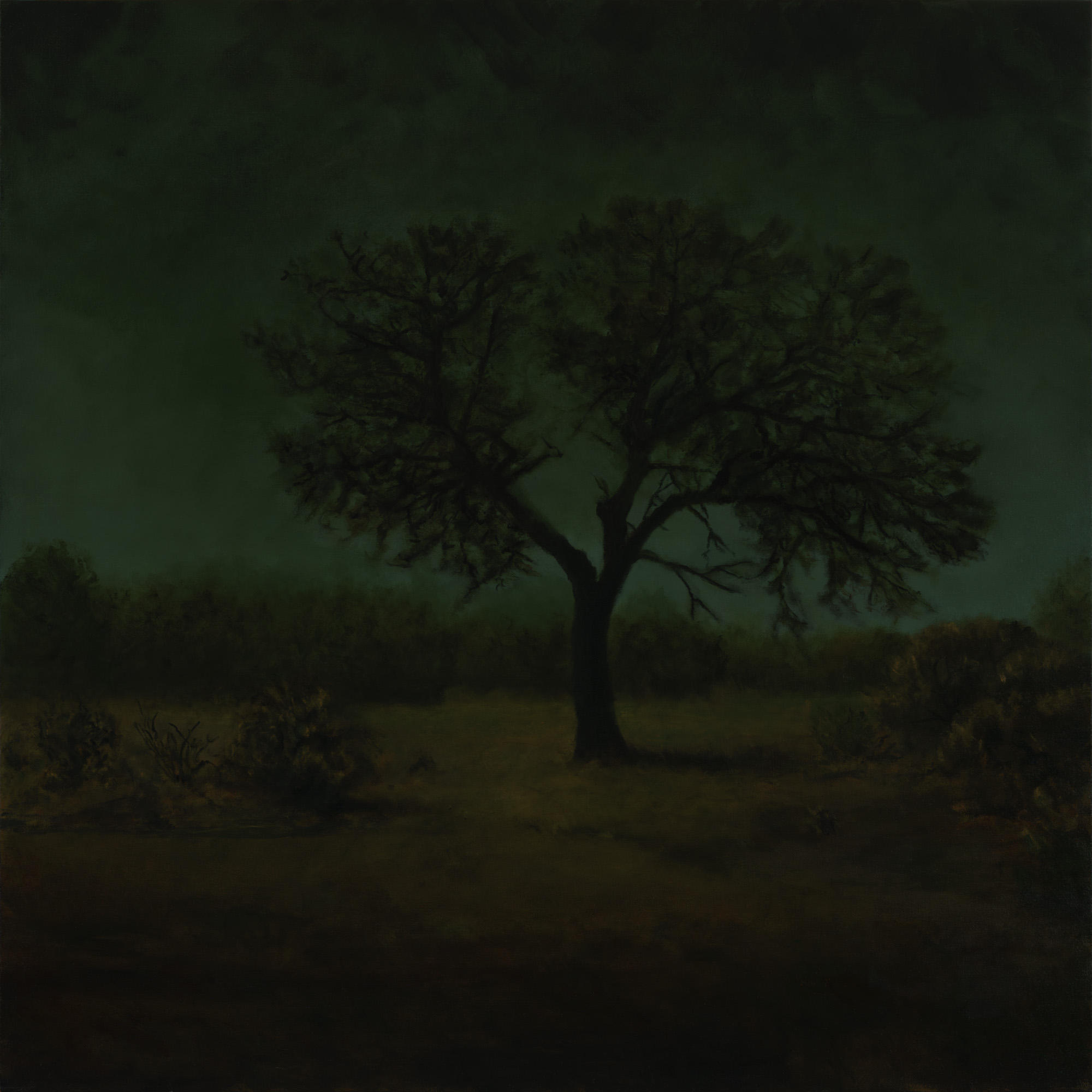 American Tonalism / The Watchman / Chris Peters